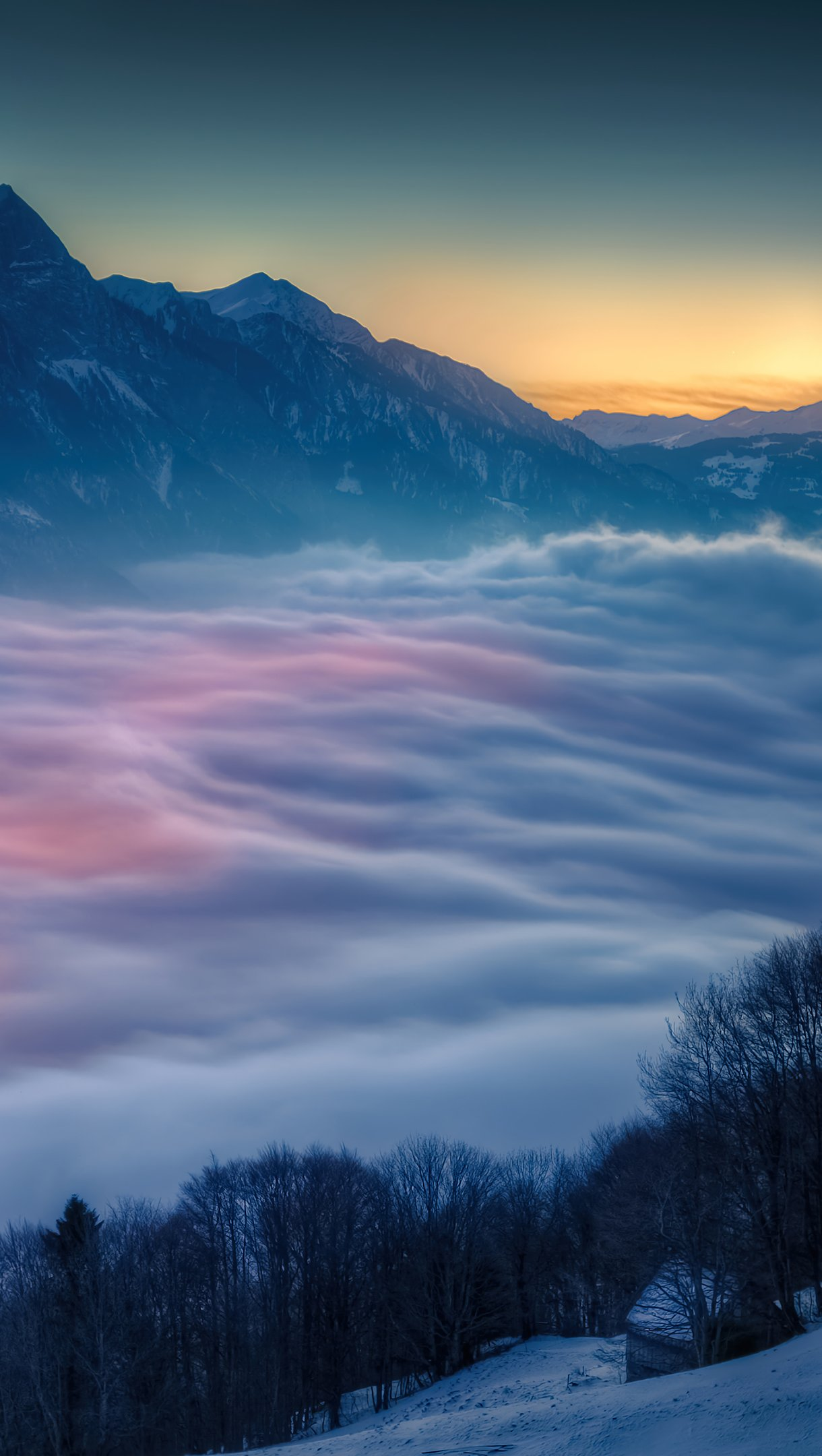 Wallpaper Fog over the forest in the mountains Vertical