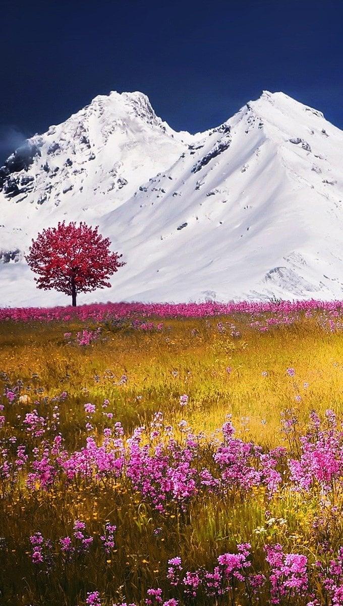Fondos de pantalla Otoño en el campo con montañas Vertical