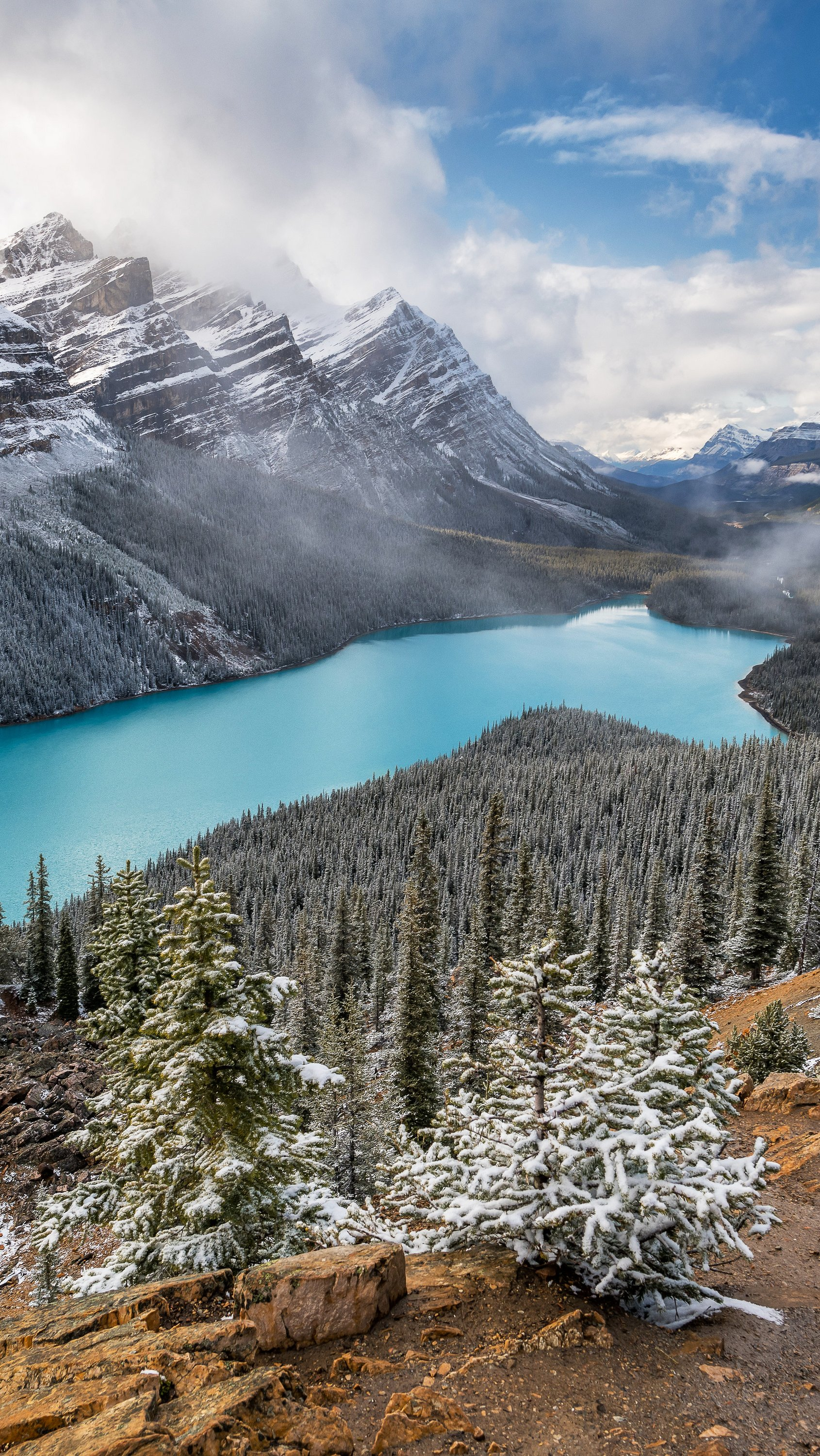 Wallpaper Lake landscape in Alberta Vertical