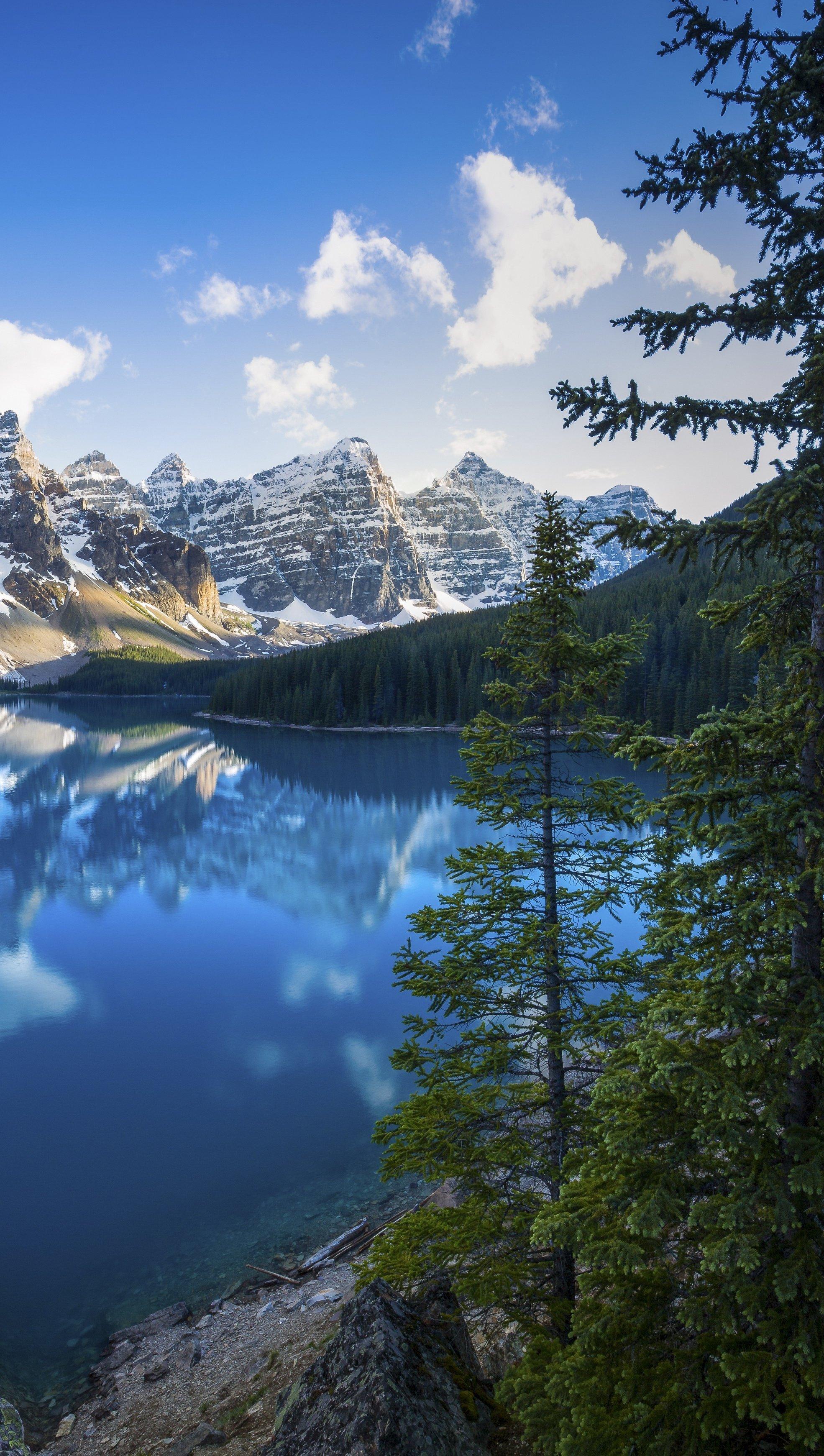 Fondos de pantalla Paisaje de lago en el bosque Alberta, Canada Vertical