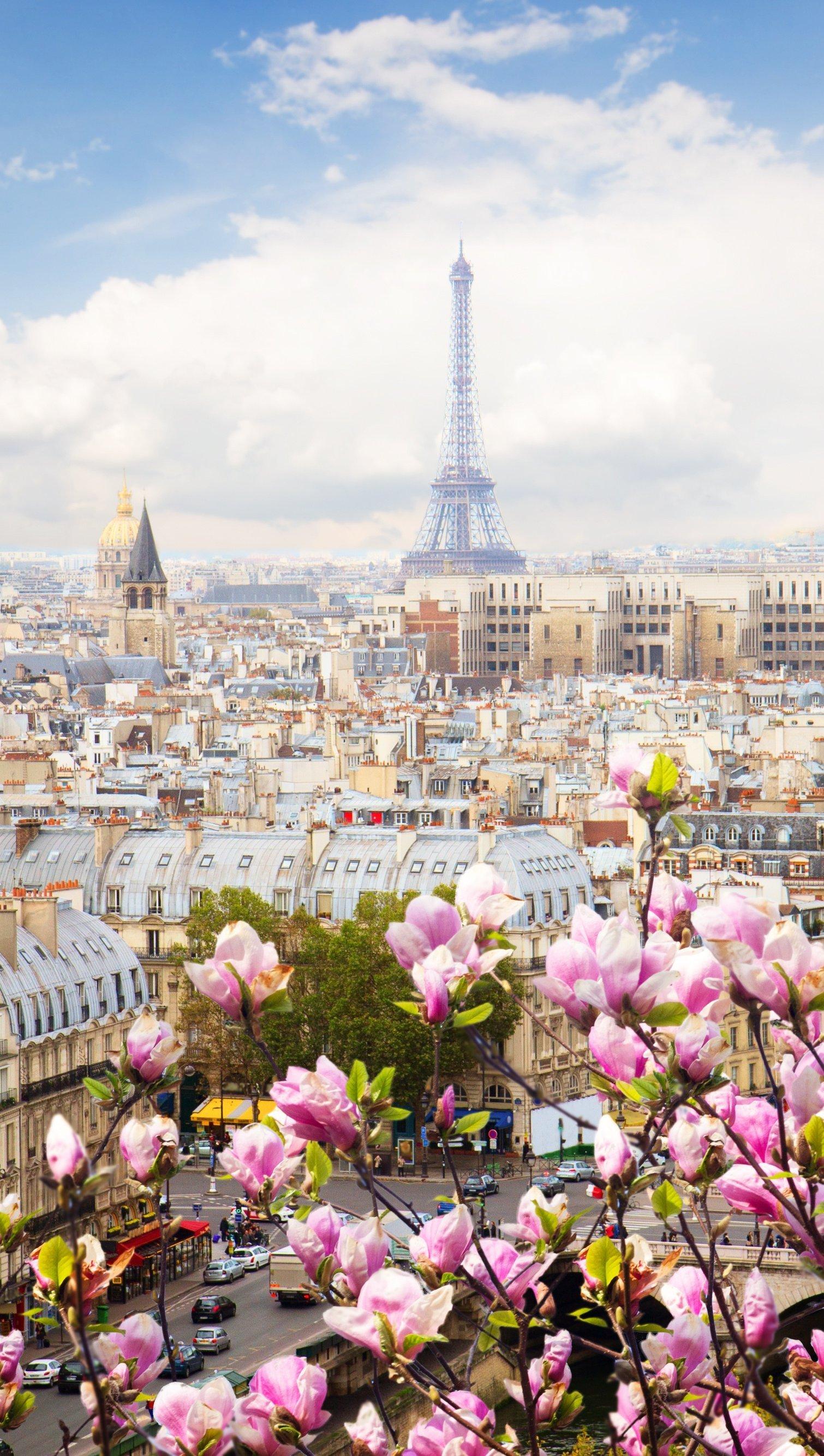 Fondos de pantalla Paisaje de Paris con flores Vertical
