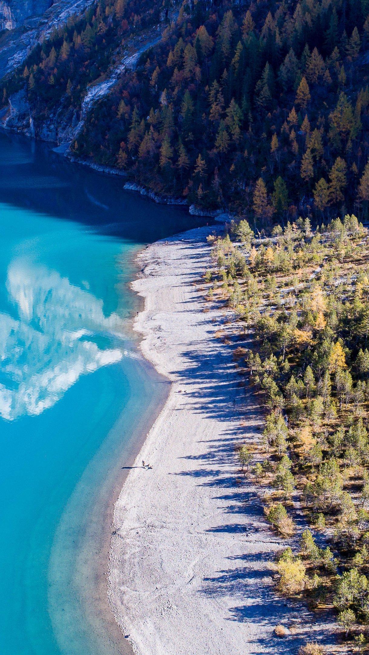 Wallpaper Beach in forest Vertical