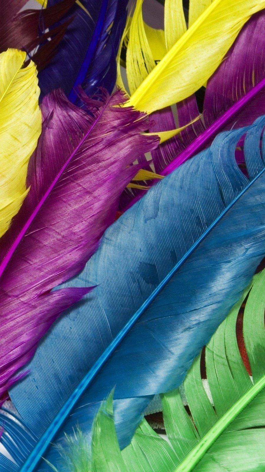 Fondos de pantalla Plumas de colores Vertical