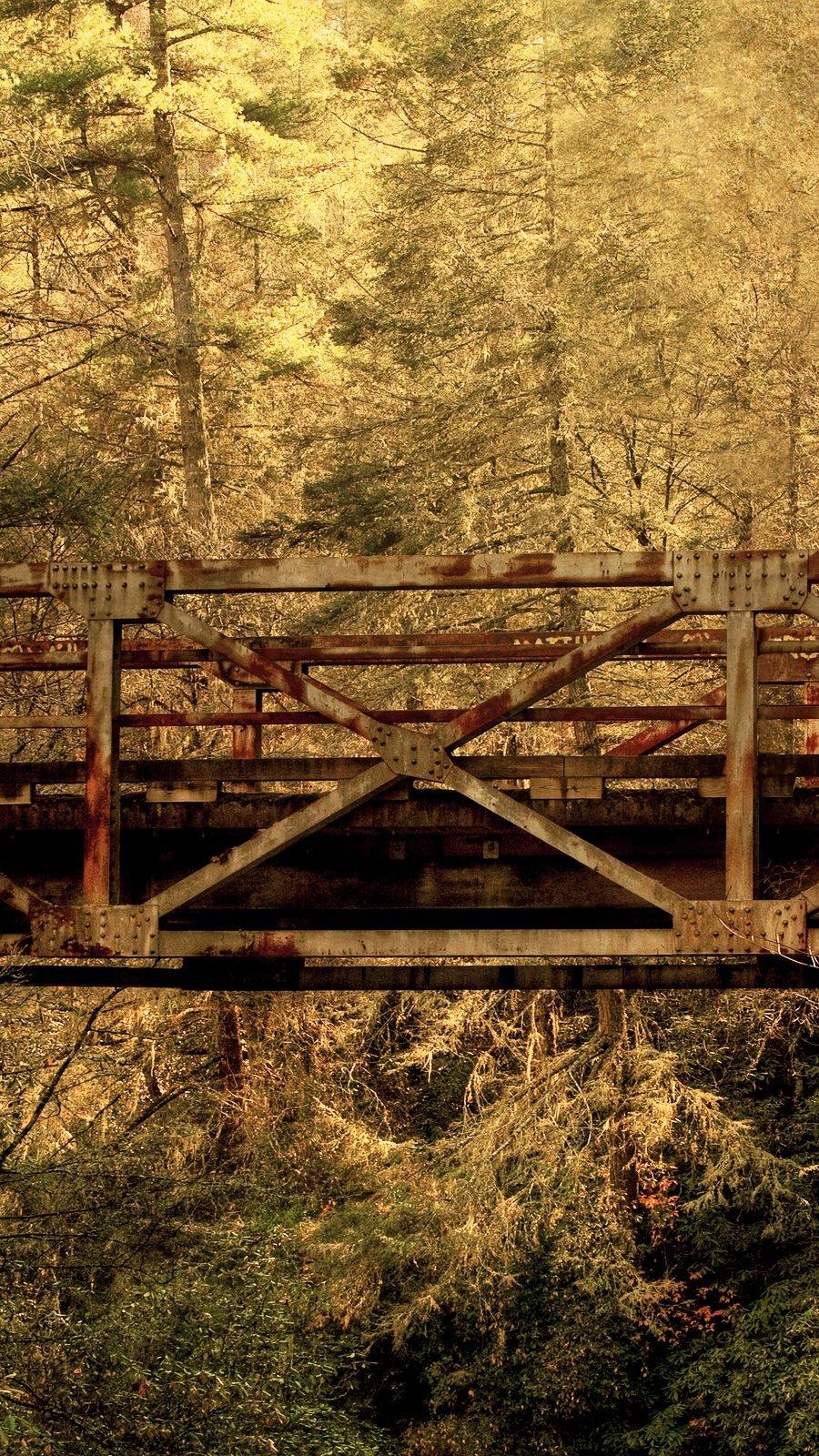 Wallpaper Bridge in autumn forest Vertical