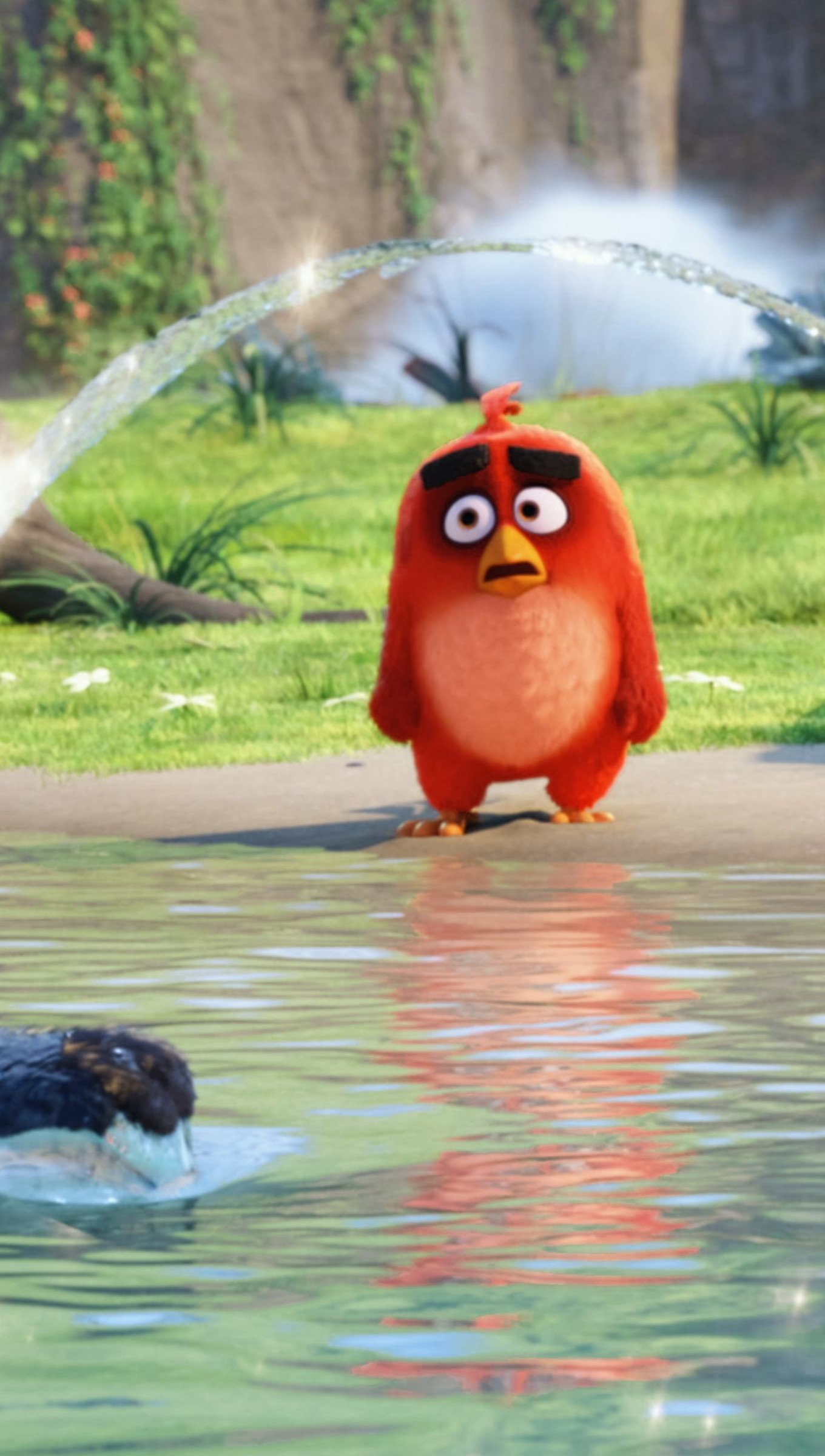Wallpaper Red, Chuck and Bomb from  Angry Birds in the water Vertical