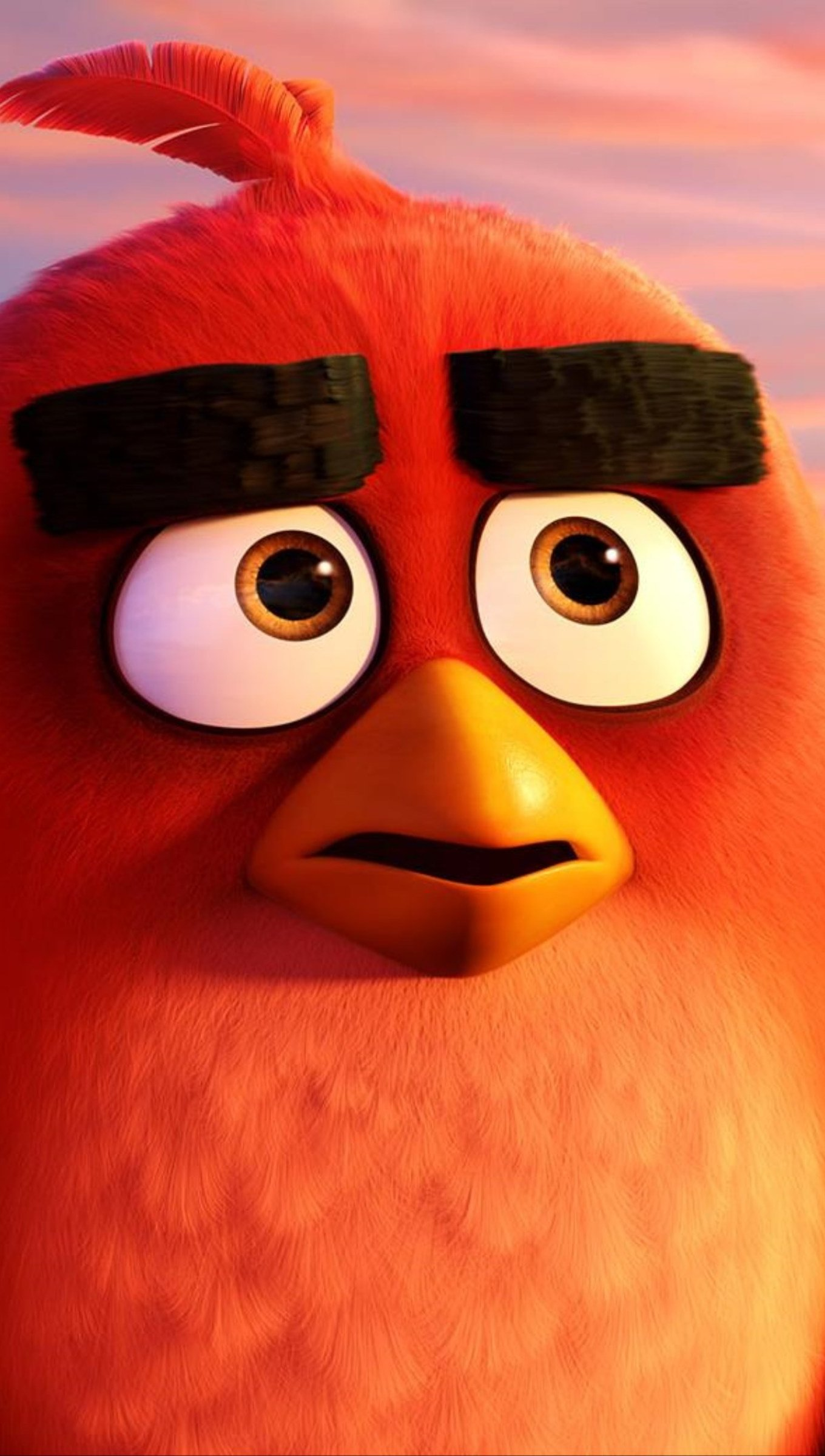Wallpaper Red and Chuck in Angry Birds Vertical