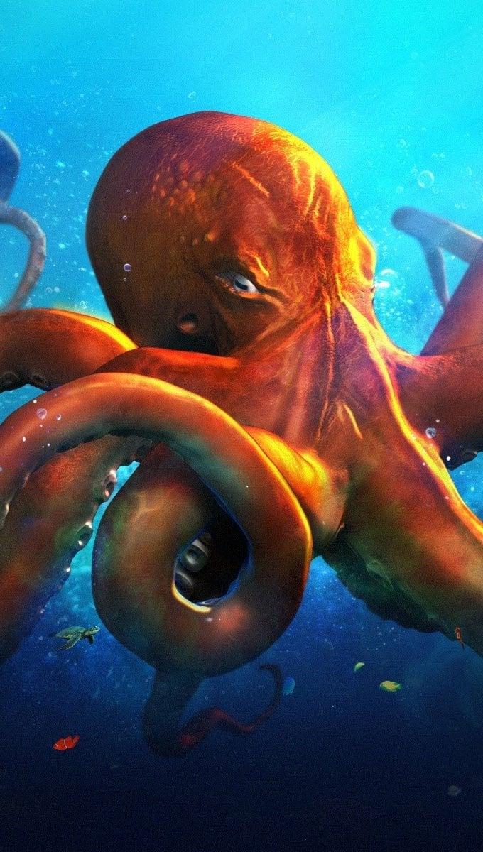 Fondos de pantalla Slouching octopus Vertical