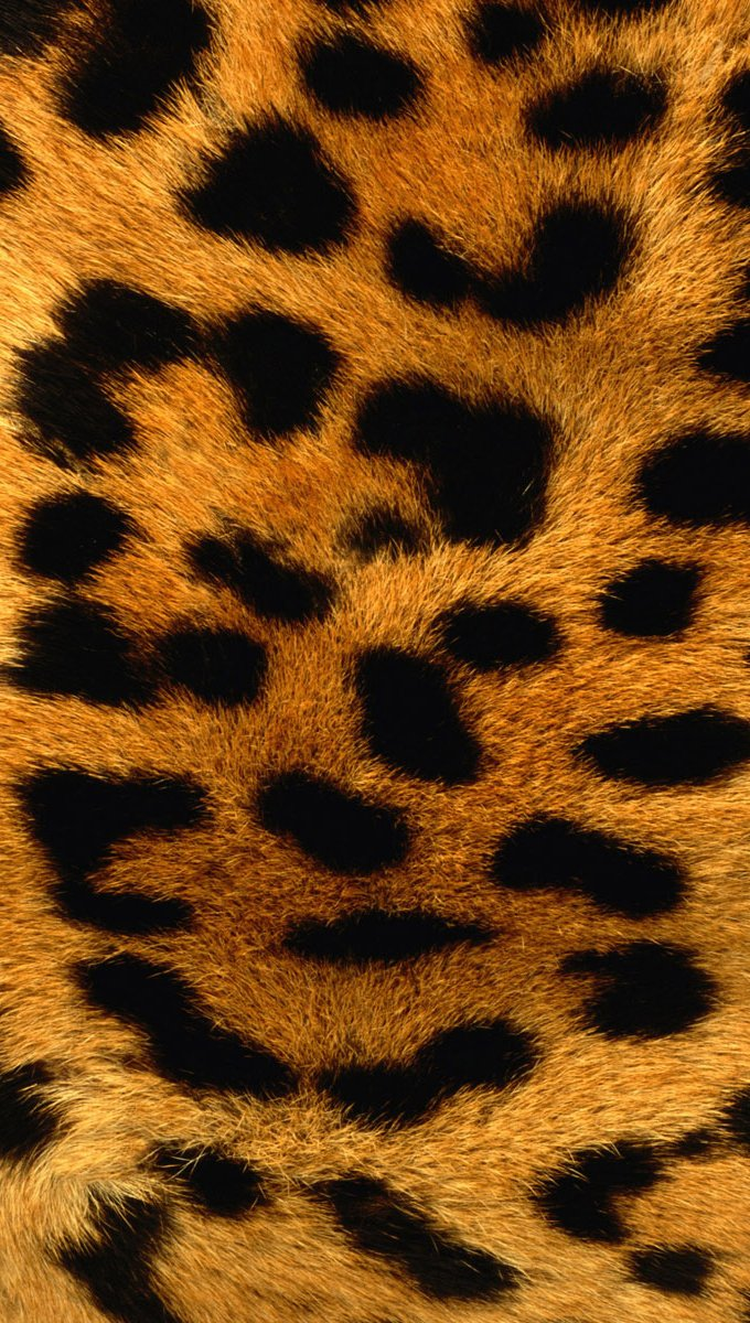 Fondos de pantalla Textura piel de leopardo Vertical