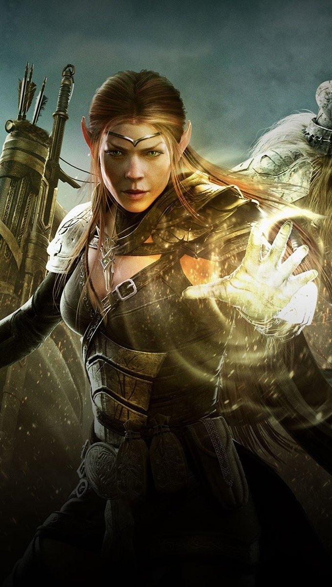 Fondos de pantalla The Elder Scrolls Warriors Vertical