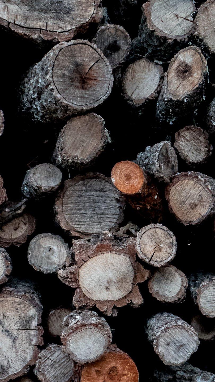 Fondos de pantalla Troncos de madera Vertical