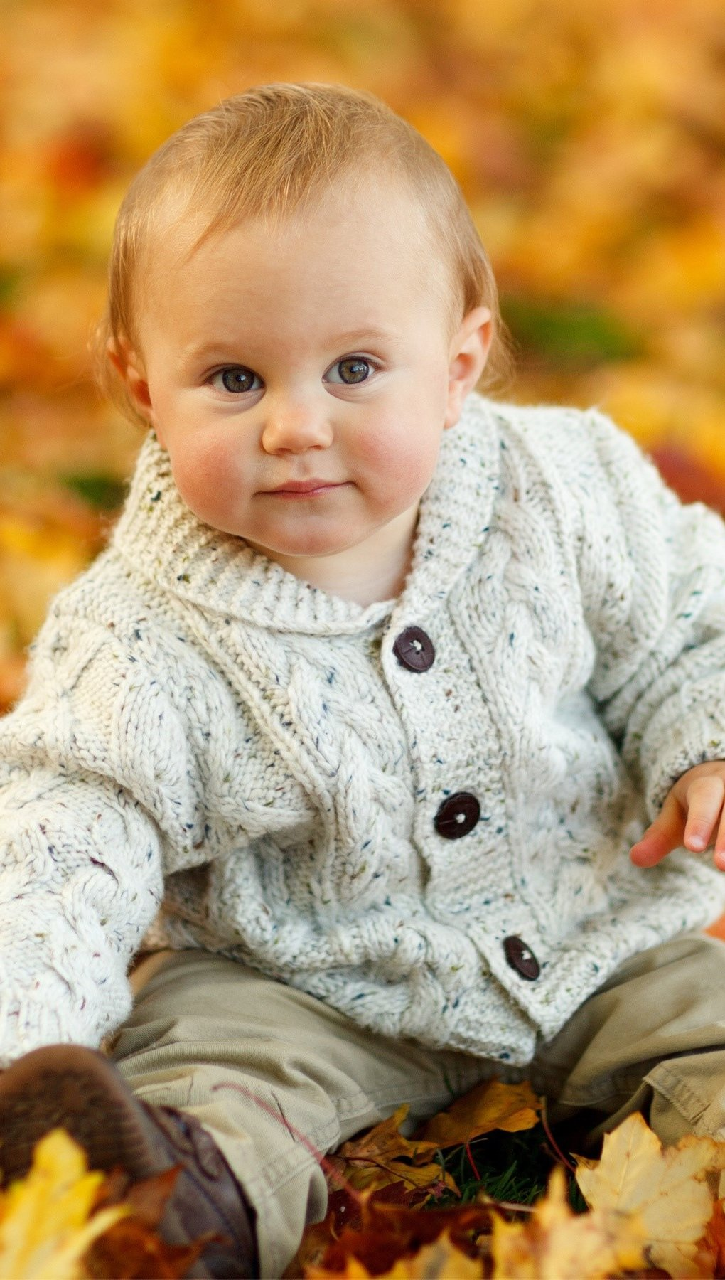 Wallpaper A baby in autumn leaves Vertical