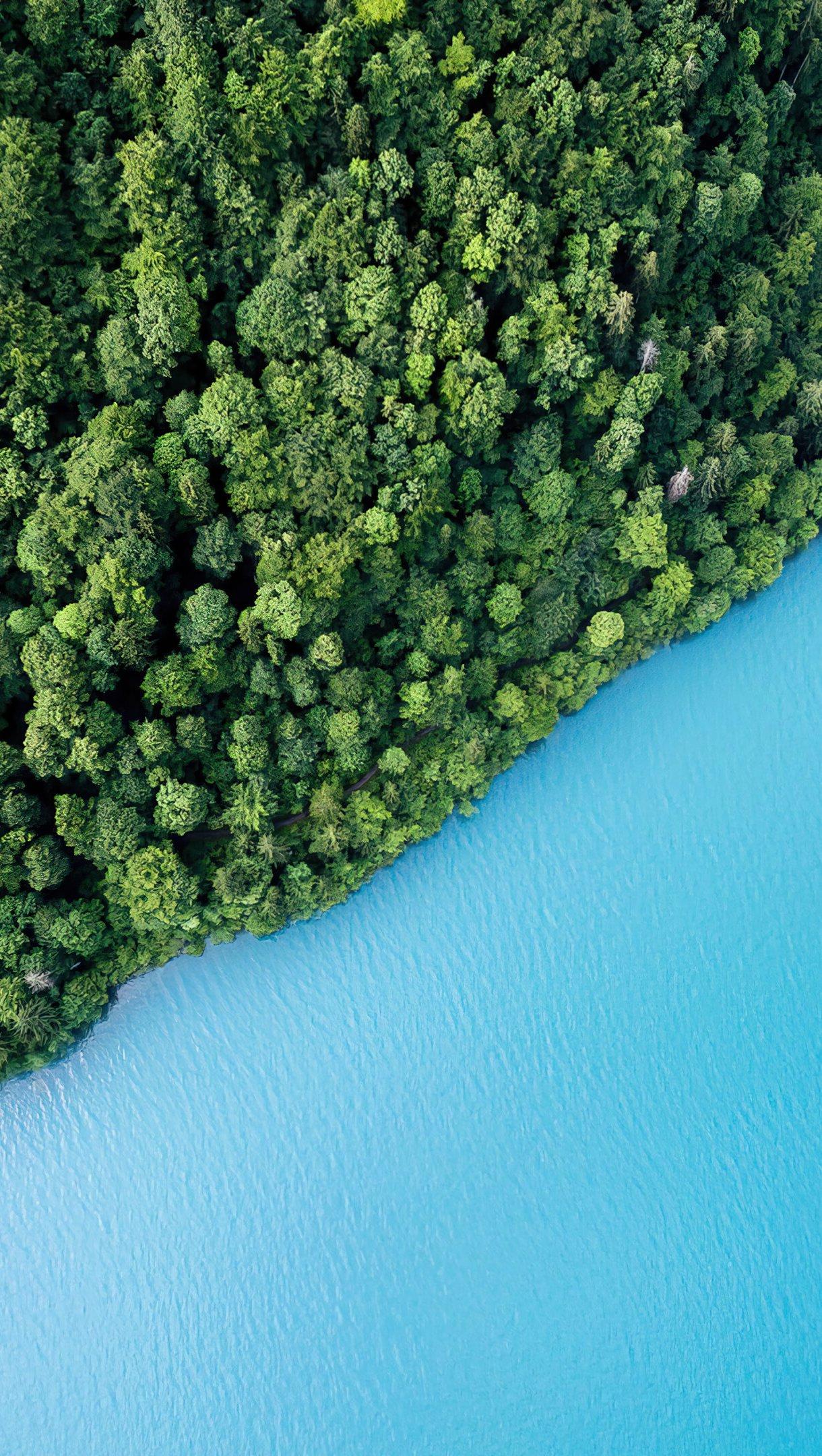 Fondos de pantalla Vista aerea de bosque y lago Vertical