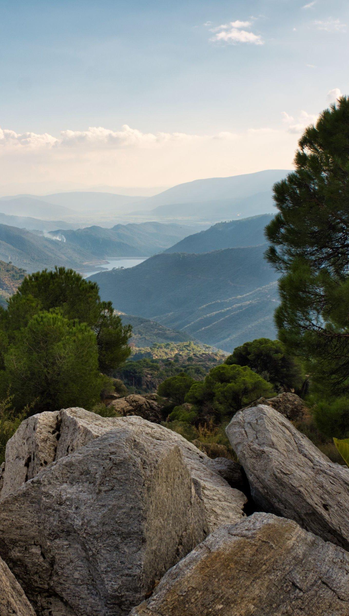 Fondos de pantalla Vista desde una montaña en el bosque Vertical