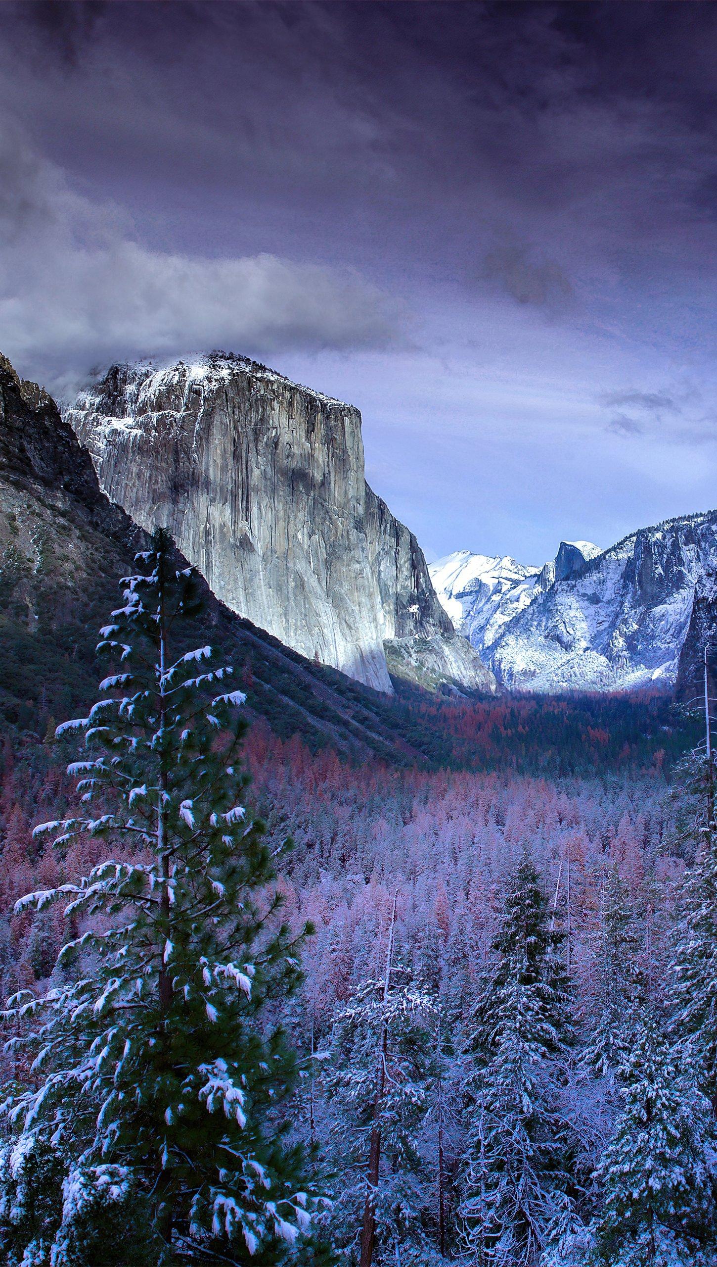 Fondos de pantalla Yosemite en el invierno Vertical