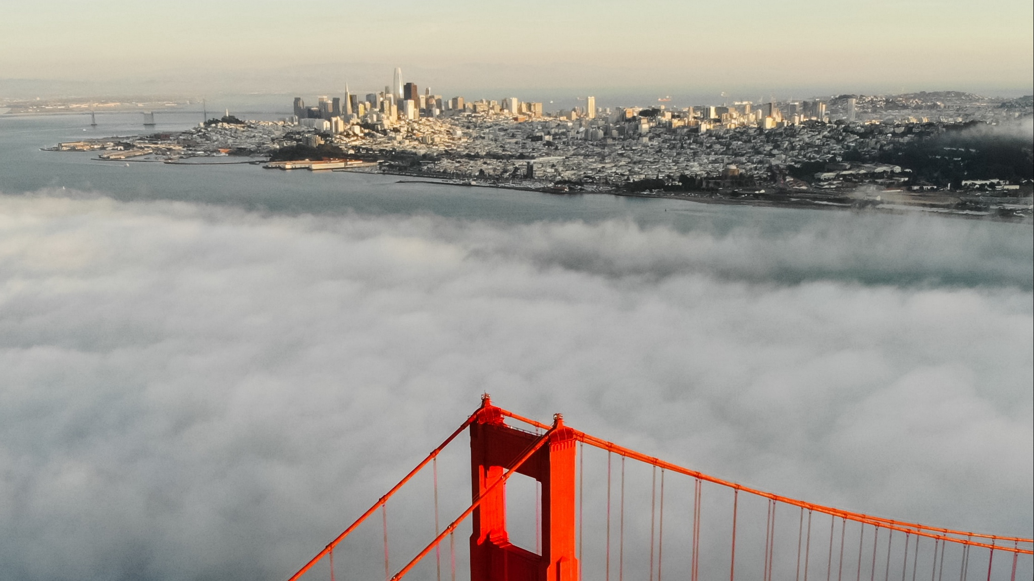 Fondos de pantalla Vista aérea de San Francisco