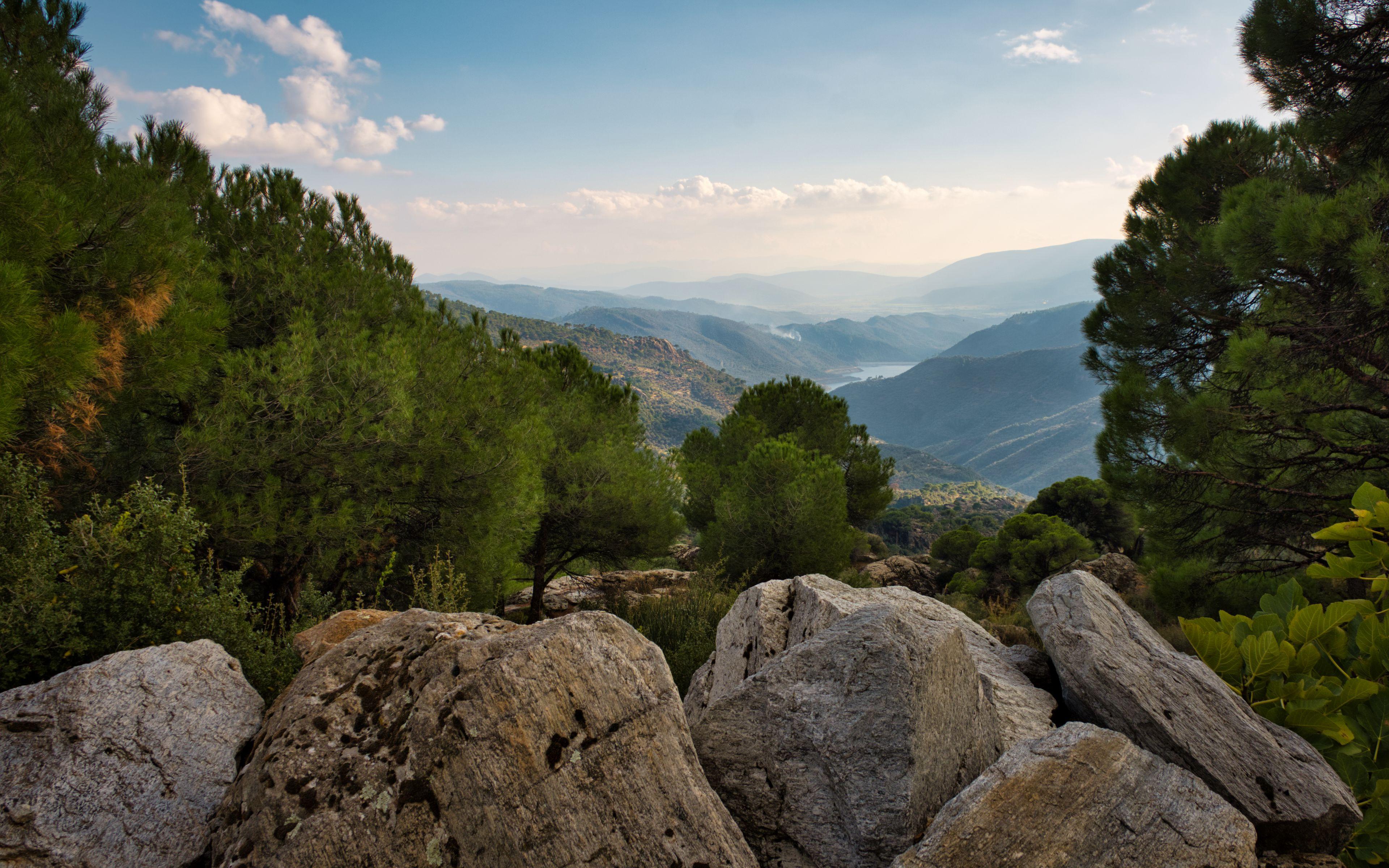 Fondos de pantalla Vista desde una montaña en el bosque