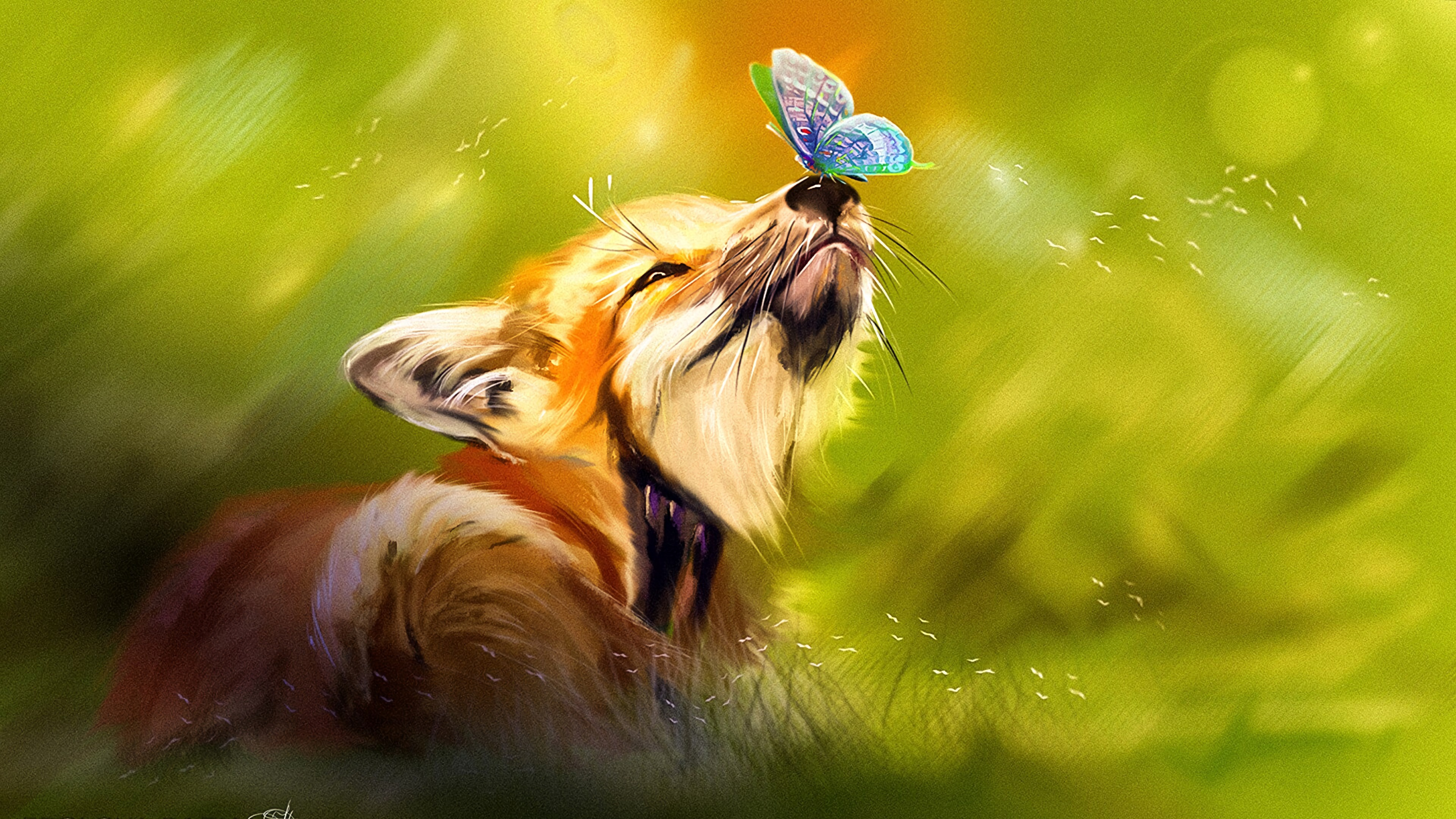 Fox With Butterfly In Nose Wallpaper 4k Ultra Hd Id4288
